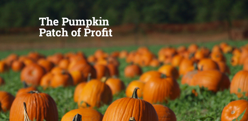 The Pumpkin Patch of Profit