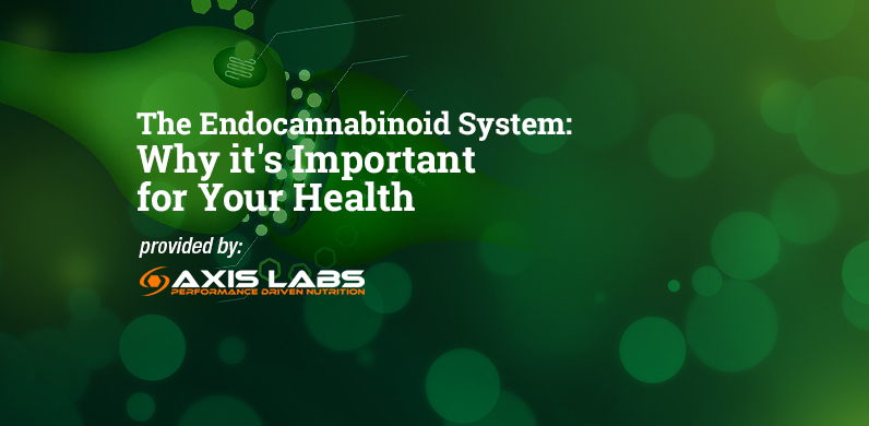 The Endocannabinoid System: Why it's Important for Your Health via Axis Labs