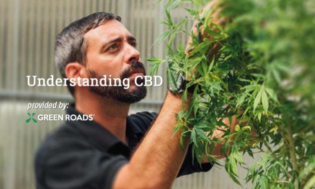 Understanding CBD via Green Roads