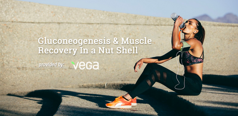 Gluconeogenesis and Muscle Recovery In a Nut Shell via Vega