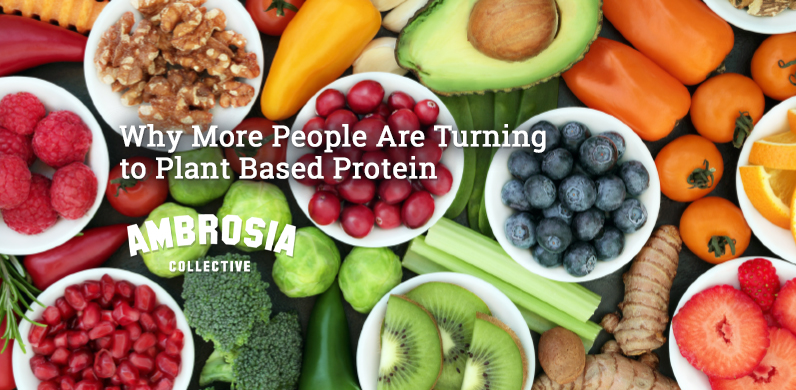 More People Are Turning to Plant Based Protein via Ambrosia Collective